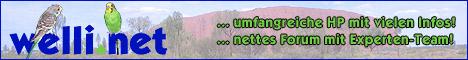Link zu welli.net